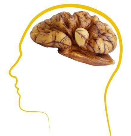 6659805 – walnut good brain health £¬isolated on white background